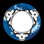 Dead Heads –Numark Slipmats – Glowtronics Store
